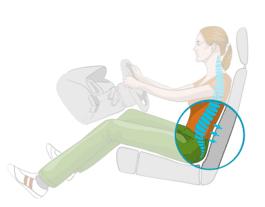 Sitzeinstellung im Auto: Wirbelsäure