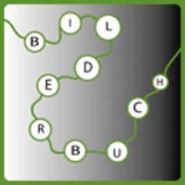 Wortketten-Spiel