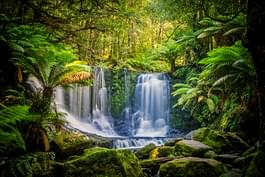 Horseshoe Falls in Tasmanien