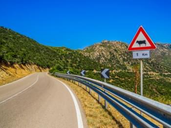 Straßenschild in Sardinien