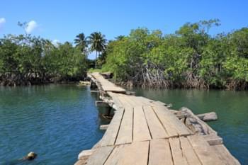 Alexander-von-Humboldt-Nationalpark, Kuba