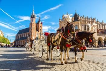 Kutsche in Krakau, Polen