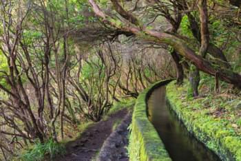 Wanderweg in Madeira