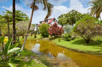 Former plantation in Suriname