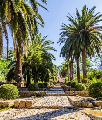 Paradiesische Gärten Alfabias Mallorca