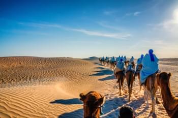 désert tunisie chameaux location voiture