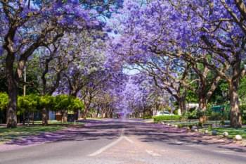 Centro de la ciudad de Pretoria