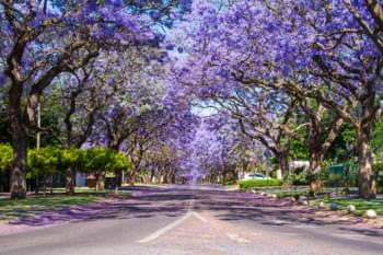 Pretoria Innenstadt