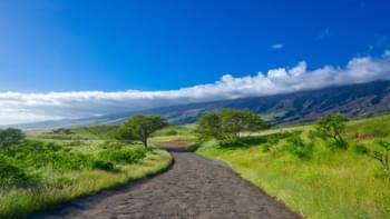 Straße nach Hana, Hawaii