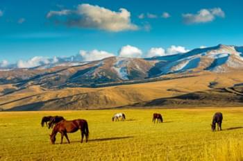 Naturaleza alrededor de Almaty
