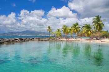 martinique eau turquoise transparente plage palmiers