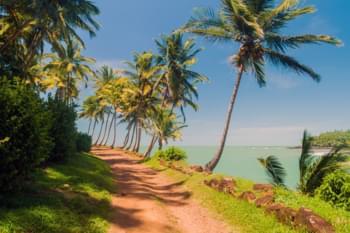 Besuchen Sie Französisch-Guayana