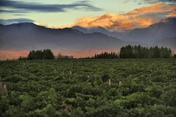 Sonnenaufgang über Argentinien