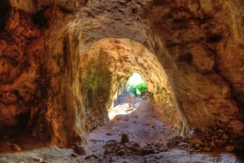 Cova del Colom