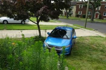 Auto auf Wiese in den USA
