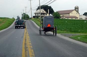 Pferdekutsche der Amish