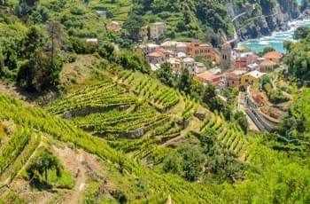 Blick über den Nationalpark bei Cinque Terre