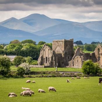 Linksverkehr mit Mietwagen - Eine spannende Reise durch Irland