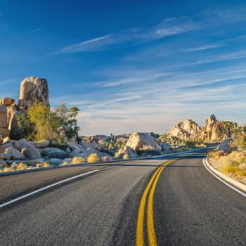 Ein bunter Roadtrip durch den auf seine Art immer noch Wilden Westen