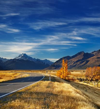 Mietwagenreise Neuseeland: Adrenalin, Robben und kristallklares Wasser