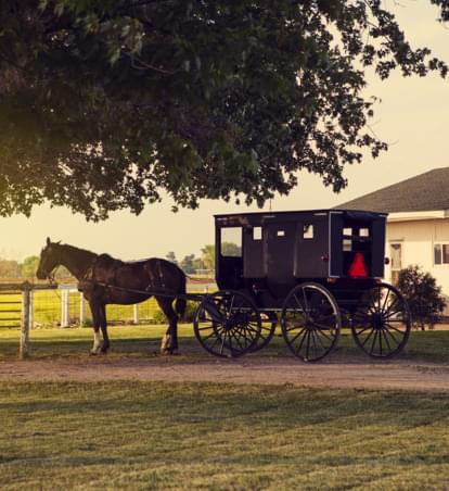 Ein besonderer Road-Trip ins Amish Country