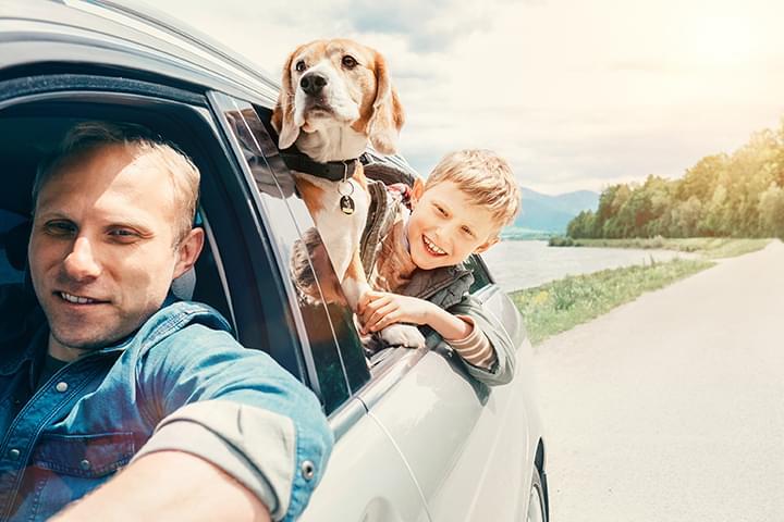 Familie mit Hund im Mietwagen
