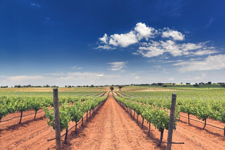 Discover Castile-La Mancha
