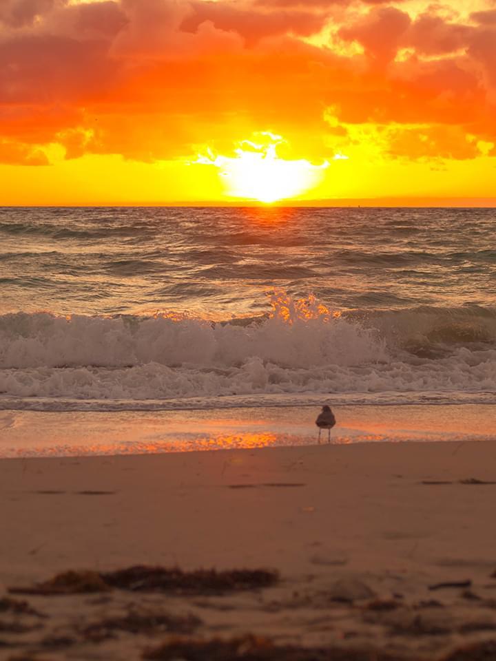 Sonnenaufgang Miami