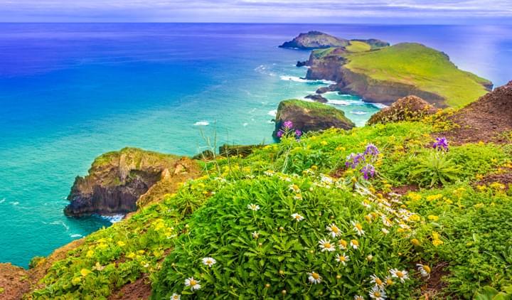 Nature of Madeira