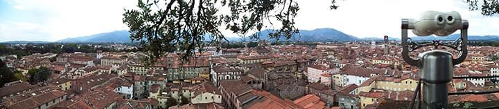 Aussicht vom Torre Guinigi in Lucca