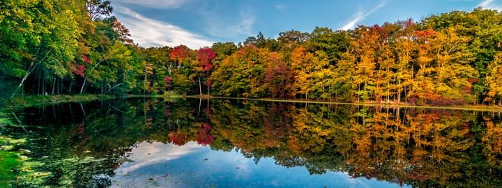 Bushkill Fall Penn