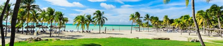 Spiaggia di Varadero con palme