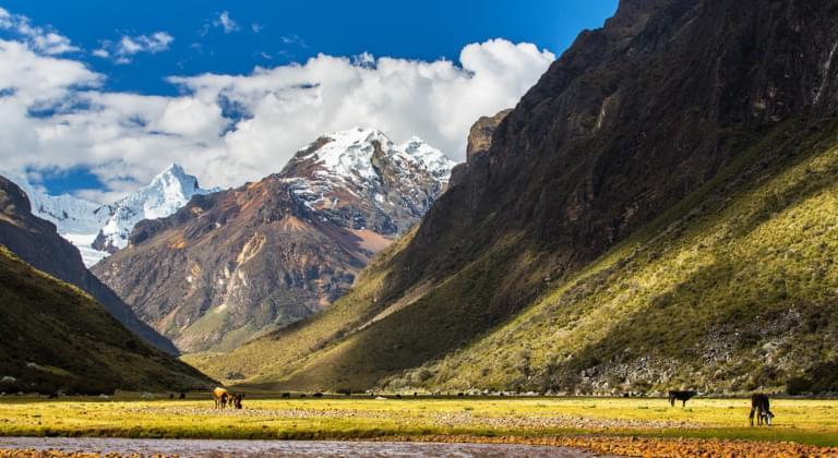 Noleggio auto Perú